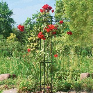 Оригинальные опоры для плетистой розы