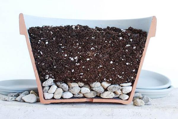 Почва для розы